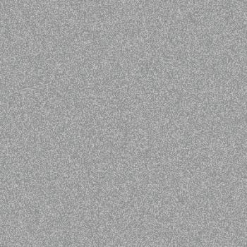 Rich_Aluminium_RAL_9007_Lacobel