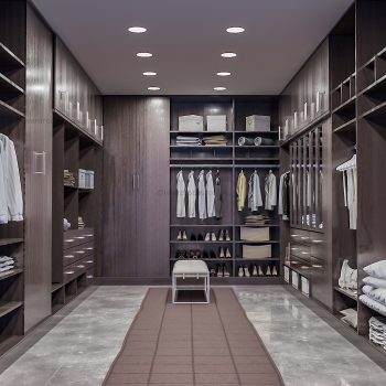 Dark fitted walk in closet